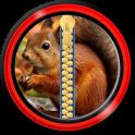 Zipper Lock Screen – Squirrel