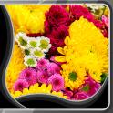 Flores viven fondos pantalla