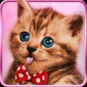 Sweet cats, live wallpaper