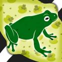 Frog Photo Crop Editor