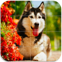 Dogs Tile Puzzle