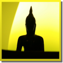 Daily Gautama Buddha Quotes