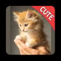 Katzen-Speicher Gehirn Spiel