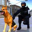 délit ville police chien chase
