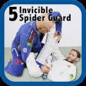 5, Invincible Spider Guard