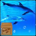 पानी के नीचे तैराकी डॉल्फिन