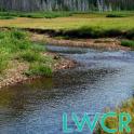 riverside creek live wallpaper