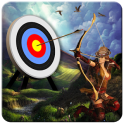 Bow And Arrows Archery 2016