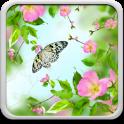 स्प्रिंग फूल लाइव वॉलपेपर