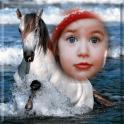 quadros da foto do cavalo