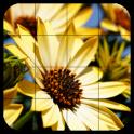 Tile Puzzles · Flowers