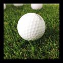 Senior Golf For Professionals