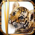 Fond d'Écran Tigre Gratuit