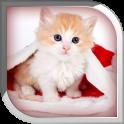 Cute Cat Live Wallpaper