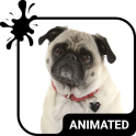 Cute Pug Animated Keyboard + Live Wallpaper