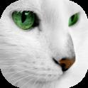 White Cats Live Wallpaper