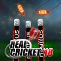 Real Cricket™ 19