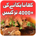 pakistani food recipes