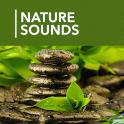 1000 Nature Sleep Relax Sounds