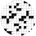 Word Puzzle Solver