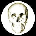 Anatomie Quiz