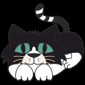 Baby Cat Deluxe