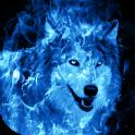 Fondo de Pantalla de Lobo Azul