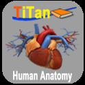 Human Anatomy Führer