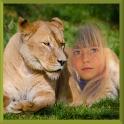 Lion Photo Frames