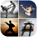 Martial Arts Wallpaper