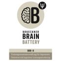 Brain Battery für Depression