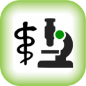 Laboratory Values