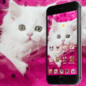 Pink Persian white Cat theme