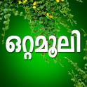 Ottamoolikal Malayalam