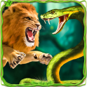 Furious Lion Vs Angry Anaconda Snake