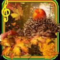 Autumn Hedgehogs live wallpaper