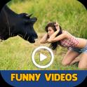 Funny Videos 2019 Free