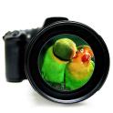 3D Zoom HD Camera ⚜️