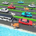Animal Pets Traffic Highway Cross
