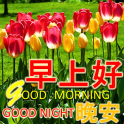 Chinese Good Morning Noon Good Night Love