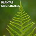 Plantas Medicinales GRATIS en español