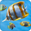 Fish Aquarium Live Wallpaper 3D Screensaver Free