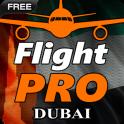 Pro Flight Simulator - Dubai