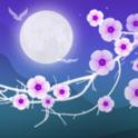 Blooming Night Hintergrund