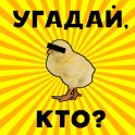 Викторина: угадай что?