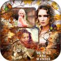 Wild Animal Photo Collage