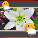 Easter Lily Clock And Weather