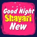 Good Night Shayari New