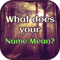 What does your Name Mean