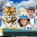 Zoo Animals Photo Frames